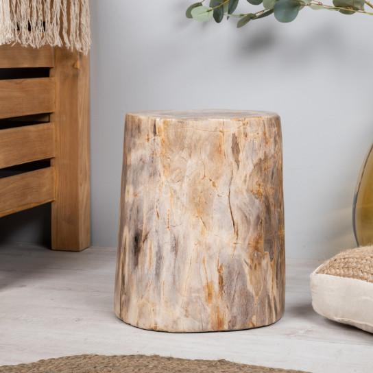 Fossil wood stool