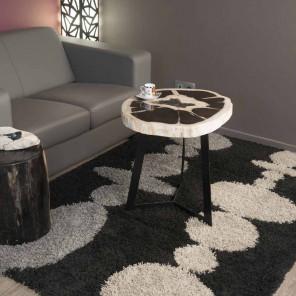 Bout de canapé en bois pétrifié