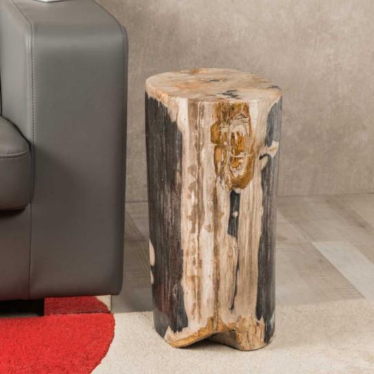 Fossil wood stool 55 cm