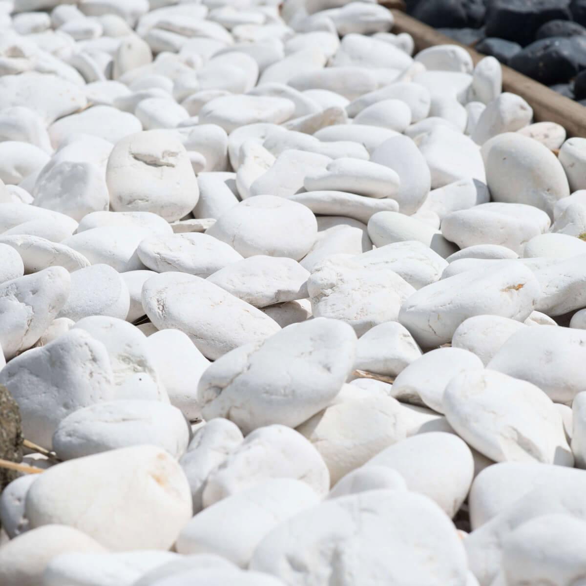 galet d coratif de jardin blanc 5 sacs p 20 kg